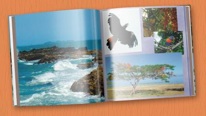 Eine Australien-Odyssee