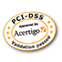 PCI DSS