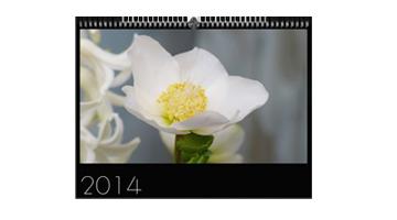 Anette Singscheidt - Calendario da parete 2014