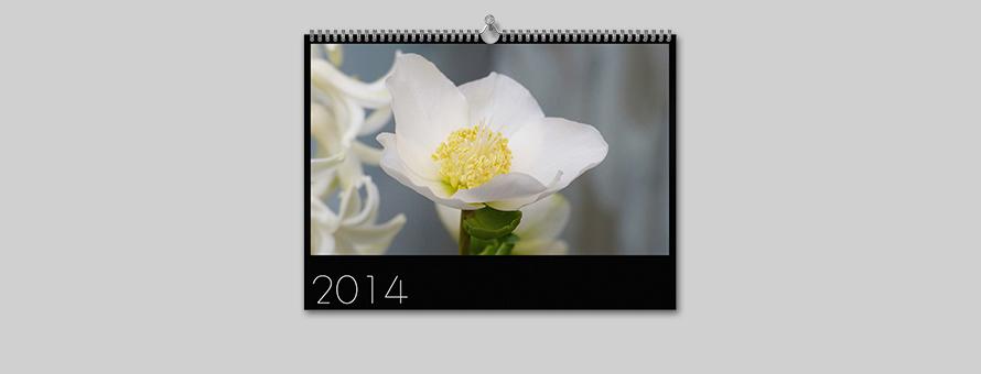 Anette Singscheidt - Wandkalender 2014