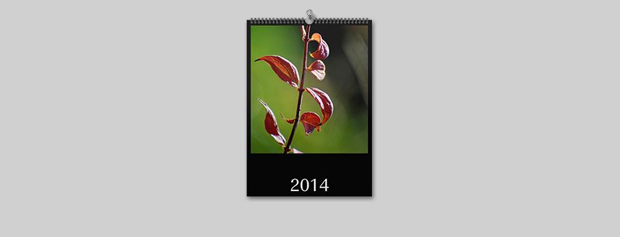 Klaus Hartmann - Wandkalender 2014