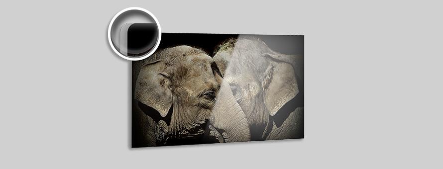 Karola Selig Zwei Elefanten