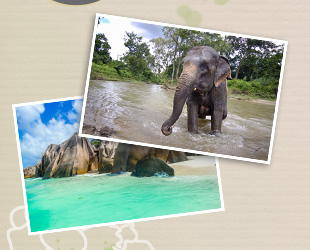 Suggerimenti: Fotografare in viaggio in Asia