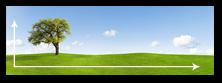 Formats Panorama 1:3