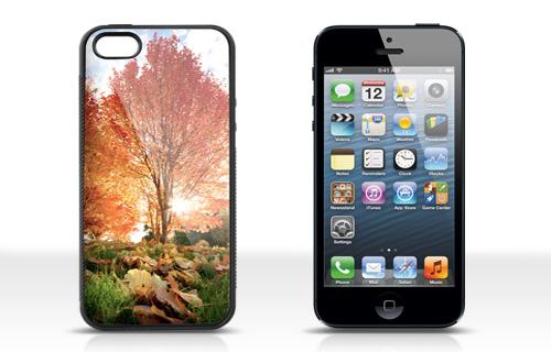 Informations sur la coque iPhone 5