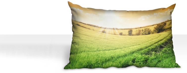 Izrada premium jastuka sfotografijom - cewe.hr