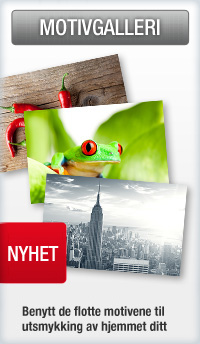 Poster & Leinwände