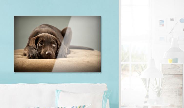 Fotoplakat za szkłem akrylowym