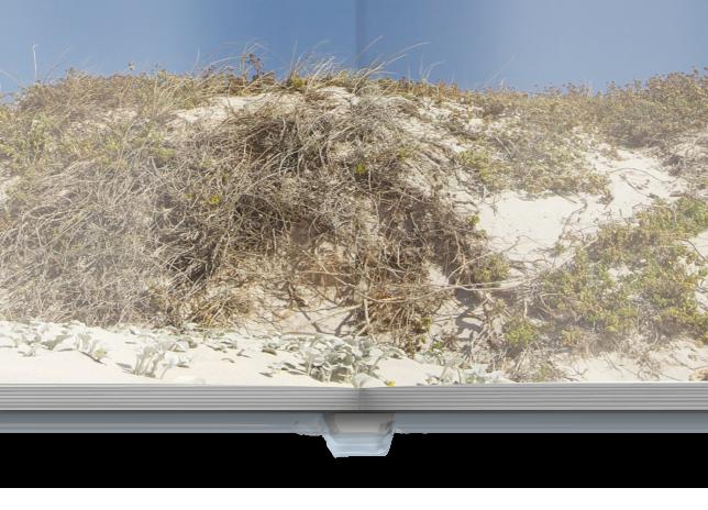 CEWE FOTOCARTE XL pe hârtie fotografică lucioasă copertă tare