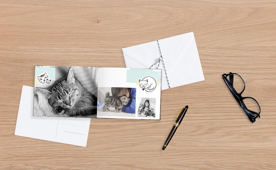 CEWE FOTOKNIHA s mačiatkom v knižnej väzbe