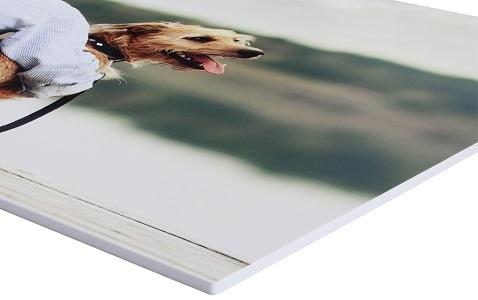 Foto na plastové desce