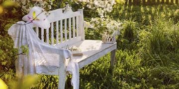 Mein schönstes Gartenfoto