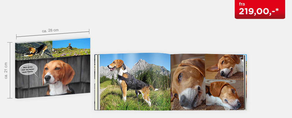 CEWE FOTOBOK Stor panorama - Softcover