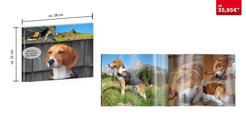 CEWE FOTOBUCH Groß Panorama: Fotopapier glänzend