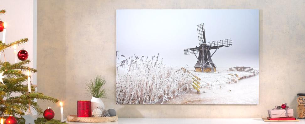 Fotoleinwand, Alu-Dibond, Acrylglas & mehr
